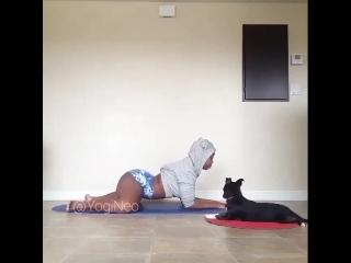 Йога - не так уж и трудно