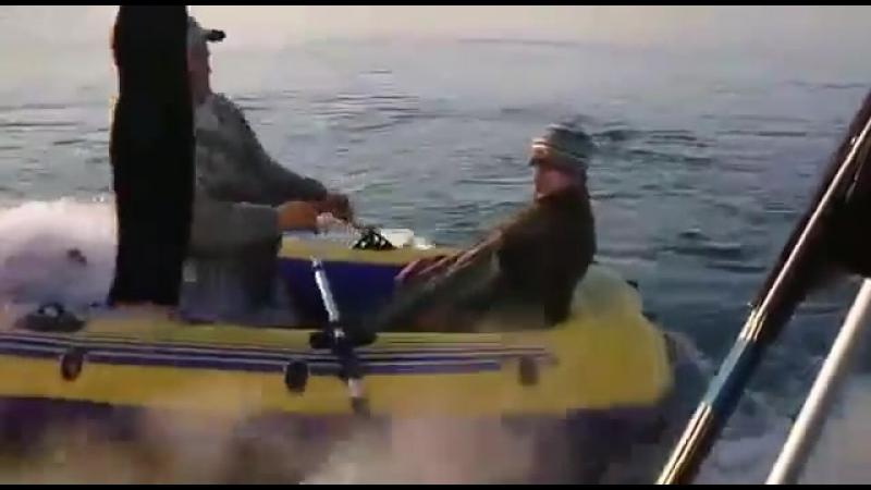 Рыбнадзор Погоня за браконьерами