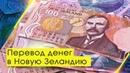 Перевод денег в Новую Зеландию KIWI ZONE образовательное агентство