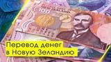 Перевод денег в Новую Зеландию KIWI-ZONE образовательное агентство
