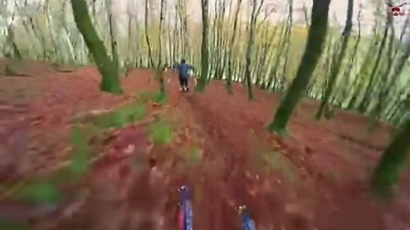 Skiing on leaves in central France - Imgur