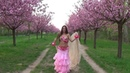 Amr Diab - Ah Habiby عمرو دياب - آه حبيبي Isabella Belly Dance HD