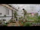 Моя любовь Ын Дон Моя любимая Ын Дон 1 сезон 7 серия