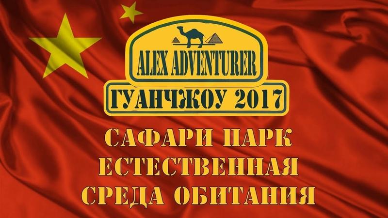 Гуанчжоу 🇨🇳 Сафари парк 2 Часть Алекс Авантюрист Загляни в кулуары