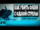 The Long Dark 16 - КАК УБИТЬ ОЛЕНЯ С ОДНОЙ СТРЕЛЫ
