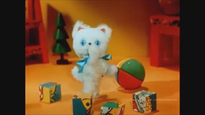 самый агресивный кот паблика