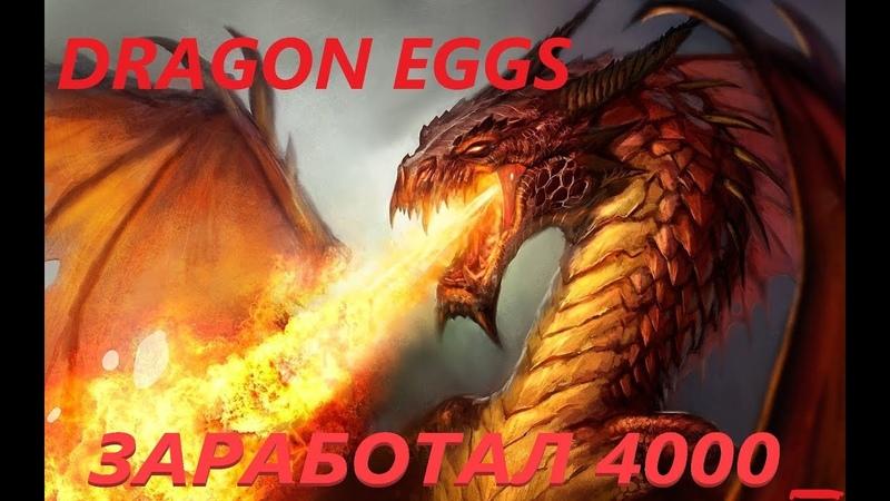 Dragon Eggs ИГРА ОТ ТОП АДМИНА! 4000 РАБОТАЕМ ДАЛЬШЕ!