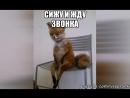 Парашный - Я жду звонка (T@CH Nebel) 2007