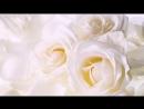 Любимому мужу на годовщину нашей свадьбы!7.12.13-Наш Самый Лучший День!