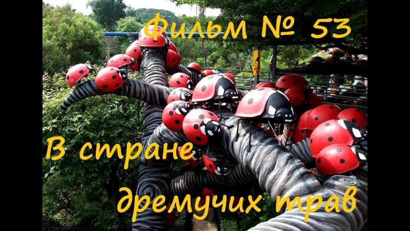 Фильм № 53 В стране дремучих трав