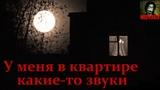 Истории на ночь - У меня в квартире какие-то звуки