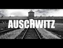 33 _RU_ (IT) {2} Пояснения к 1-му протоколу исследований Освенцима - Calogero Grifasi Disclosures