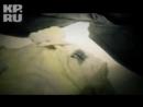 Лера Лера - Волчица (Эксклюзивная премьера КЛИПА!)
