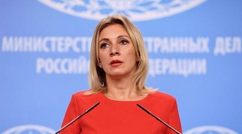 Захарова отреагировала на три короткометражки из Солсбери