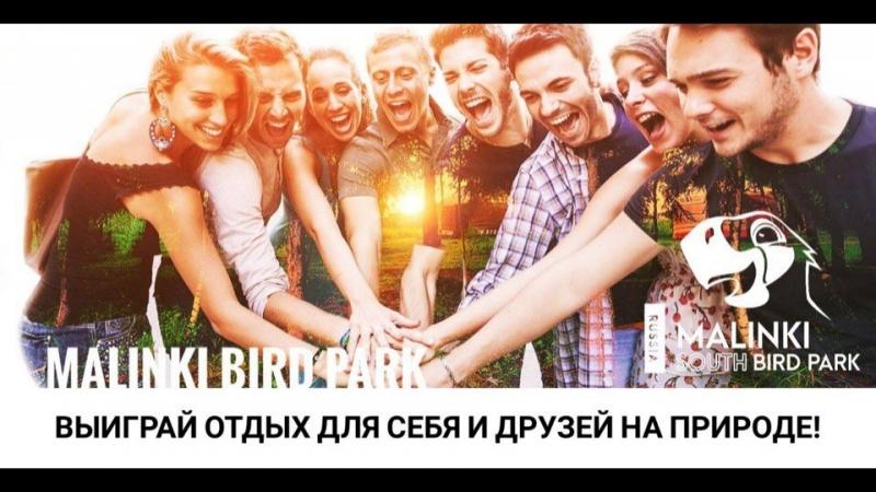 WOW Розыгрыш! 🤩🤩🤩 » Freewka.com - Смотреть онлайн в хорощем качестве