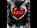 Сердце бережно храни что бы душа не страдала