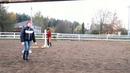 Dream Horse team совместно с Bayadera club представляют 😅