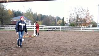 Dream Horse team совместно с Bayadera club представляют