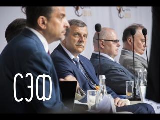 СЭФ I Среднерусский экономический форум