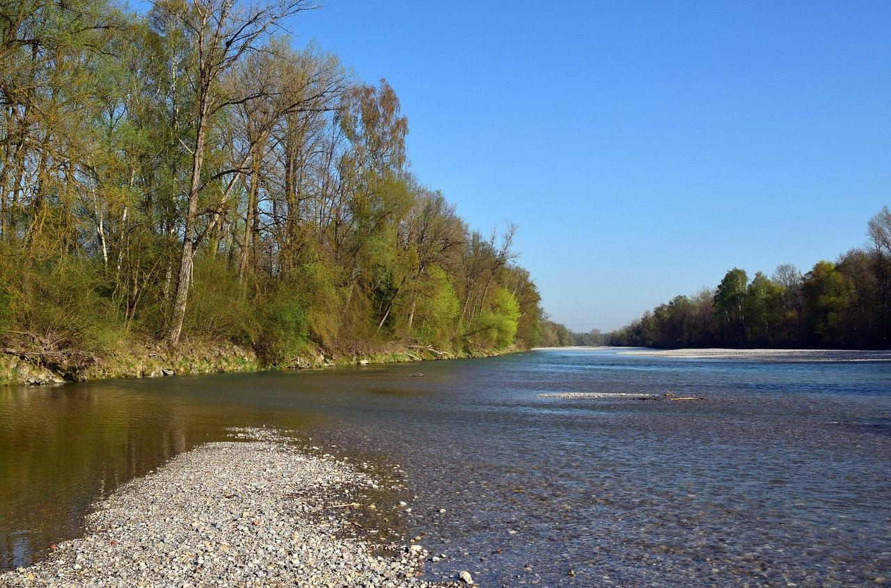 В СВАО пройдет экологическая акция «Сохраним чистоту московских рек!»