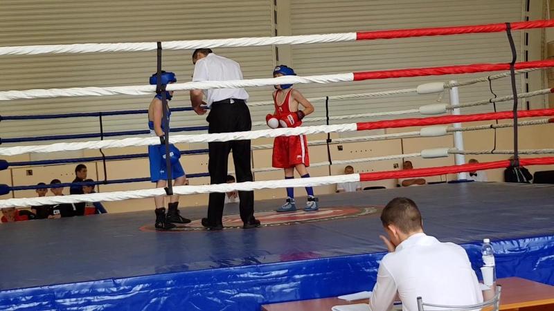 В Тюмени проводится соревнование по боксу. Приехали участники из многих городов России и ближнего зарубежья. Сынок Амир выиграл