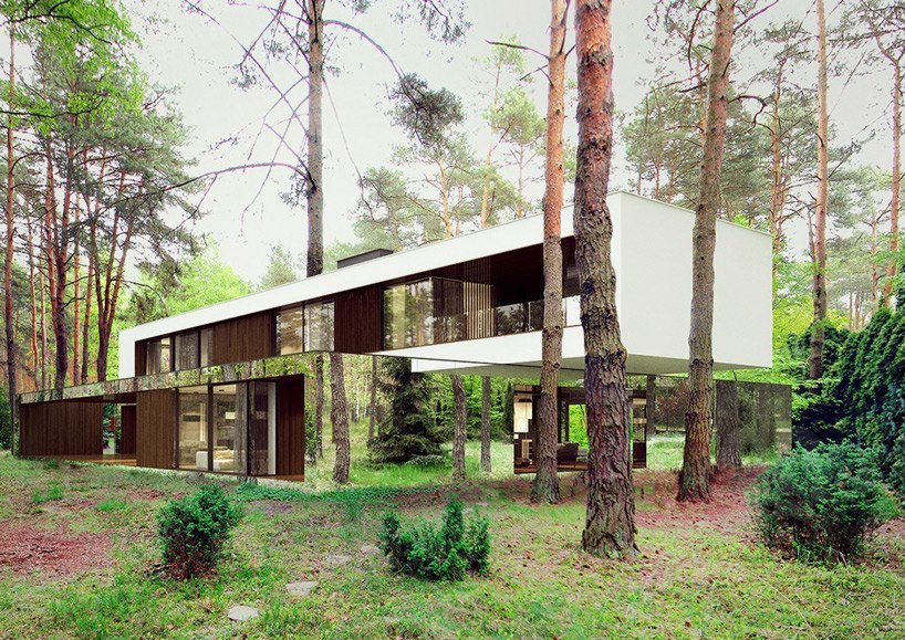 reform architekt's mirrored home hovers between the trees