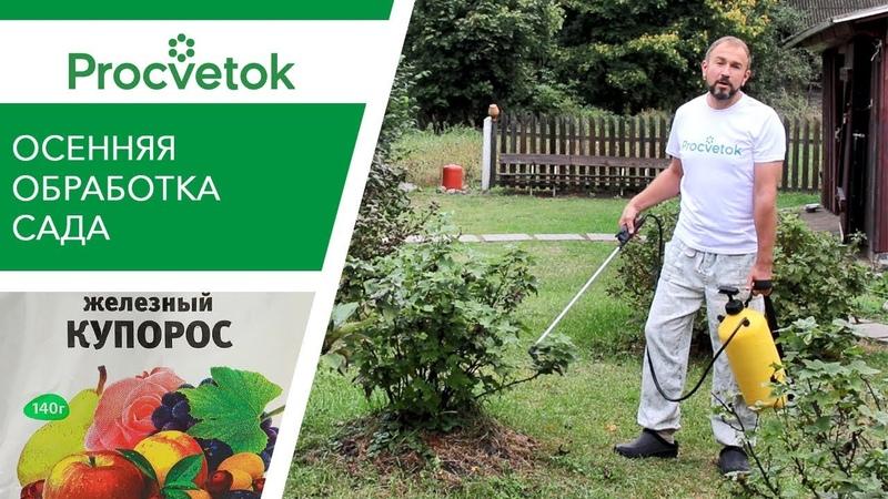 СРОЧНО обработайте сад от болезней и вредителей! Искореняющая обработка сада осенью