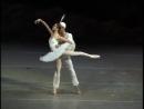 Ульяна Лопаткина и Николай Цискаридзе Pas de deux из балета Л Минкуса Баядерка 2007