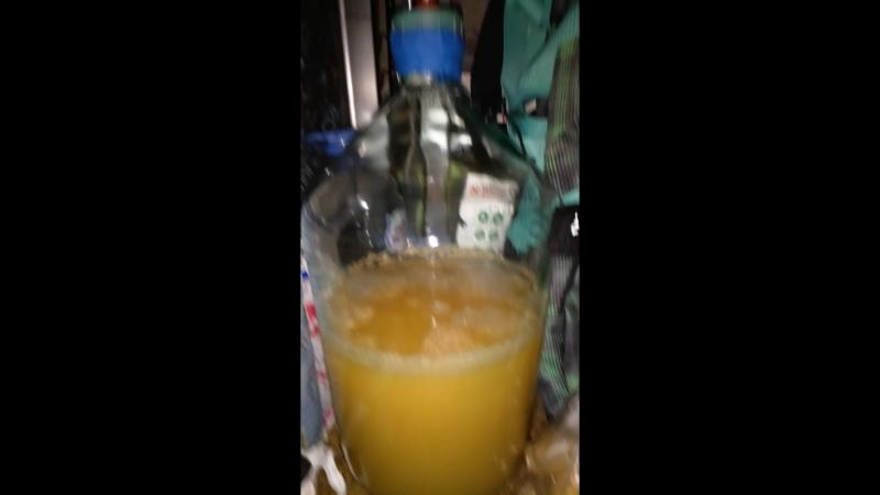 Брожение пшеничного пива в бутыли 20 л.