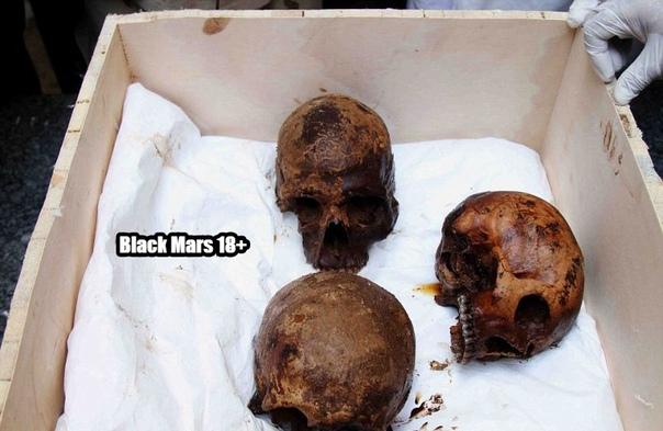 Египетские ученые наконец-то вскрыли загадочный черный саркофаг, найденный в Александрии на глубине 5 метров. В нем оказались три скелета, получившие серьезные повреждения из-за просочившейся внутрь саркофага воды. Останки, скорее всего, принадлежат солда