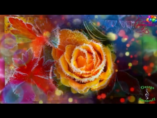С днем рождения в январе  Красивая музыкальная видео открытка  Видео поздравление.mp4