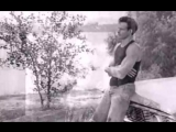Damn Yankees - High Enough (Official Music Video)