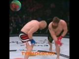 Россиянин Харитонов нокаутировал американца Нельсона на турнире Bellator 207