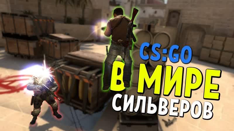 Dmitriy Landstop В МИРЕ СИЛЬВЕРОВ 28 CS GO