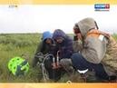 За тридцать лет стало теплее Ямальские ученые изучают вечную мерзлоту