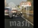 На Щелковском шоссе лось сбил байкера