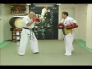 KUDO - 100 Most Advanced Fighting Techiques _ 4_4