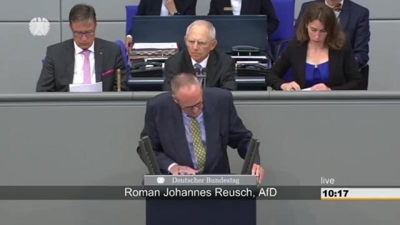 Roman Johannes Reusch AFD Wieso werden Steuerverschwender nicht zur Verantwortung gezogen