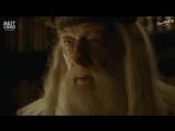Гарри Поттер в России (переозвучка)