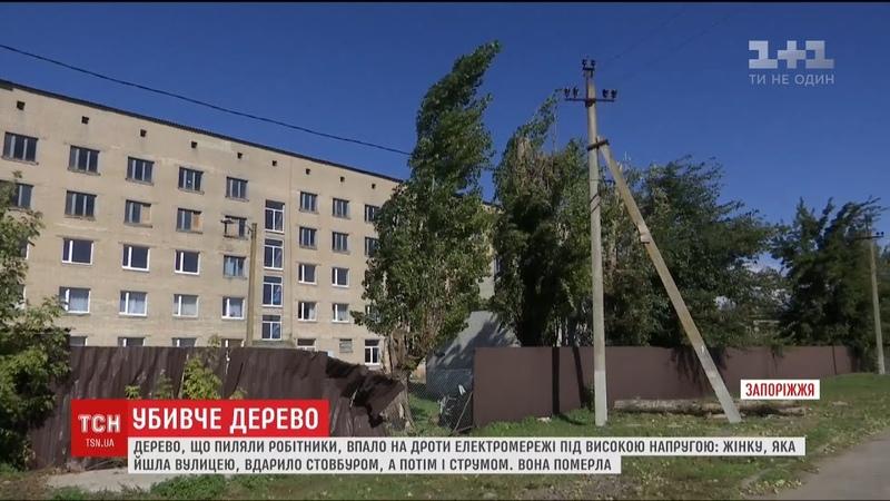 Дерево, яке спилювали працівники училища, вбило жінку із вадами слуху