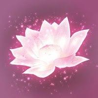 Install  Lotus Digital