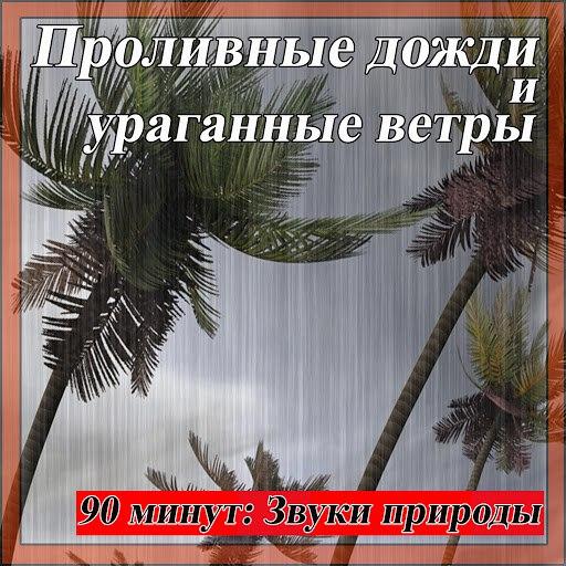 Звуки Природы альбом Проливные дожди и ураганные ветры: 90 минут: Звуки природы