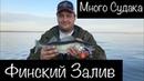 Супер рыбалка на СУДАКА Финский Залив Бронка