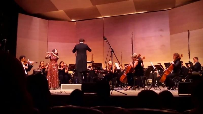 Карл Рейнеке Концерт ре мажор для флейты с оркестром 2 часть