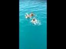 Чёрное Открытое море