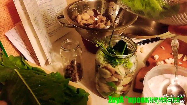 Солёные белые грибы на зиму Очень вкусный рецепт