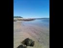 Баренцево море залив
