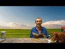 ПРИЧИНА ДИАБЕТА НЕ САХАР ВАРИКОЗ БЕЗ ОПЕРАЦИИ ЭПИЛЕПСИЯ ВЫПАДЕНИЕ КИШКИ Виталий Островский
