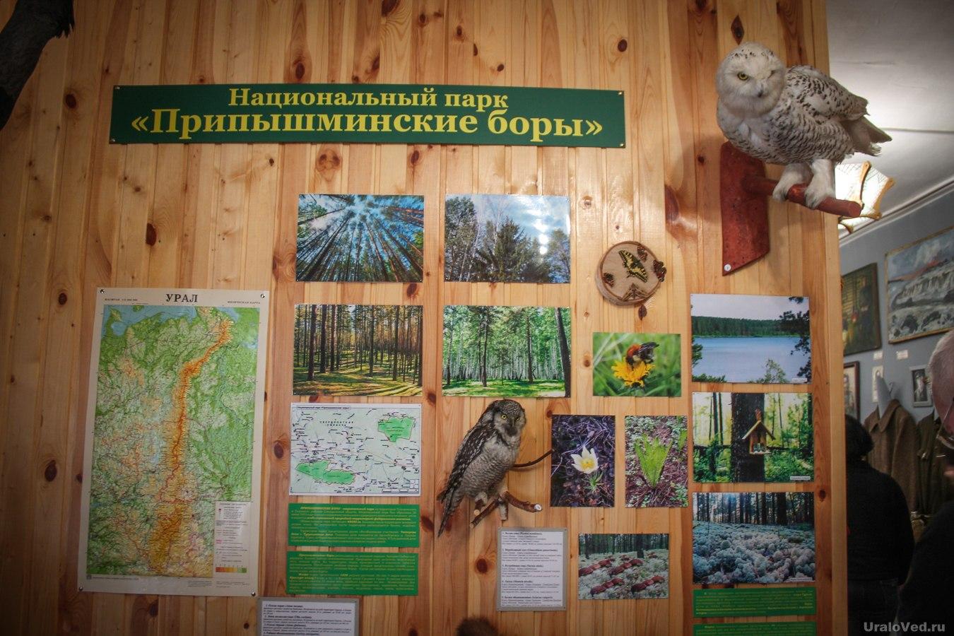 Уголок природы в Троицком музее