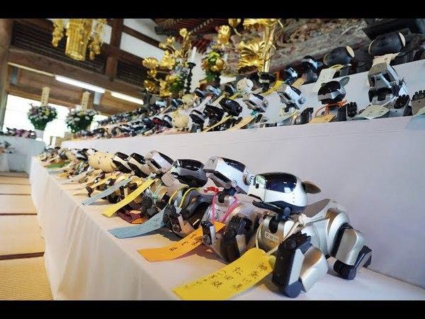 Funeral for robot dog AIBO アイボ葬(NHC0039)